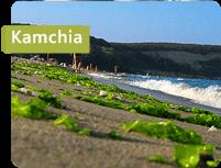 kamchia-miniused