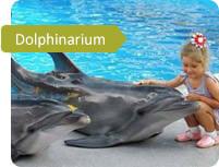 Dolphinarium in Varna