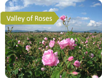Valley of Roses and Thracian Kings